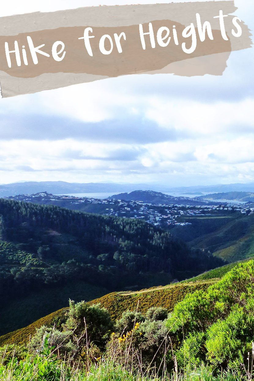 The Best Hiking Trail around Wellington