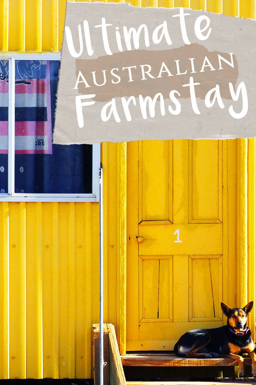 Your Ultimate Australian Farmstay with Coodlie Park on the Eyre Peninsula // Sponsored