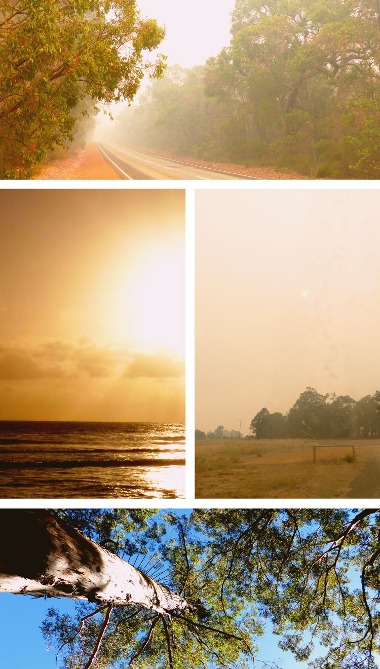 What Happened after We Escaped Bush Fires - Read part 5 of my crazy Australian adventures