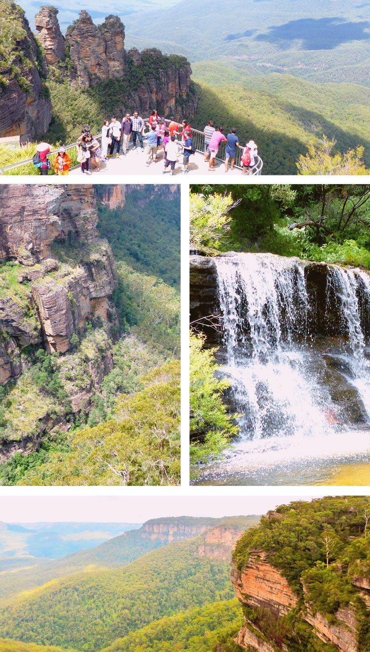 Hiking the BLue Mountains with #sp Colourful Trips in Australia and spotting a Tasmanian devil