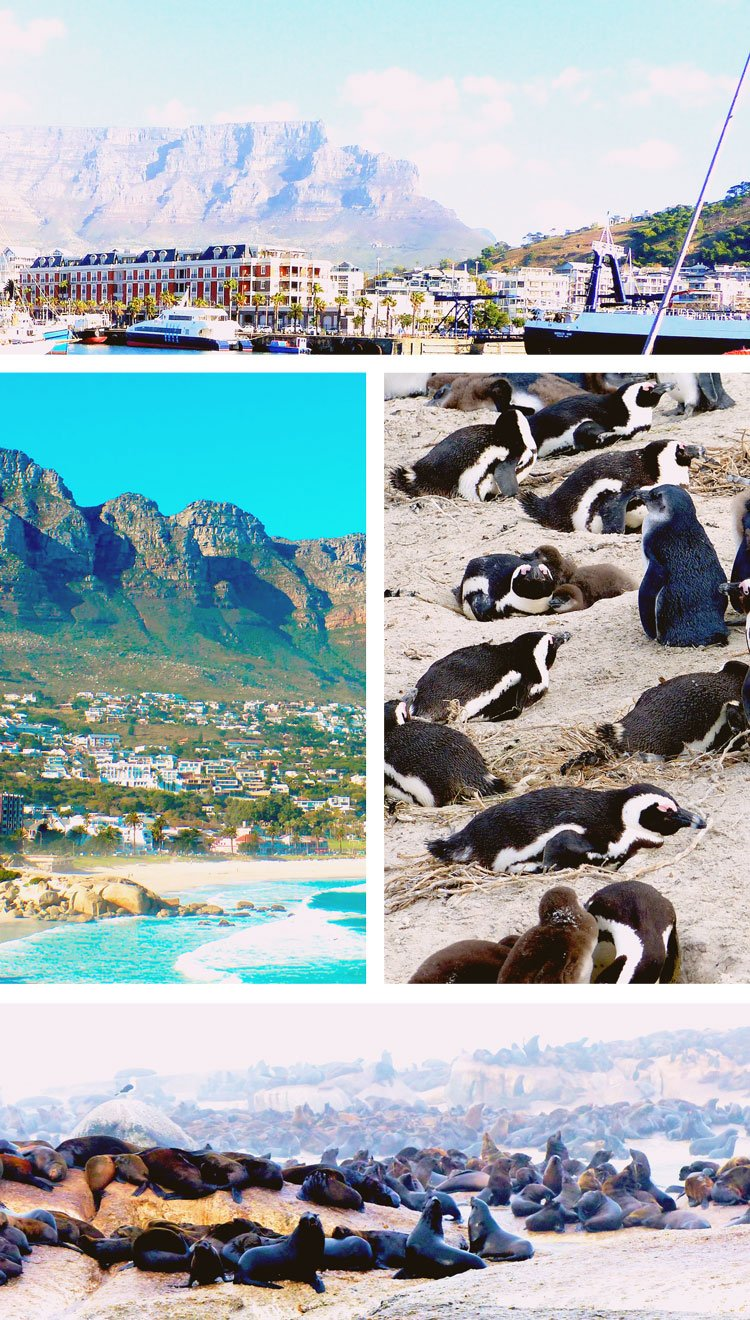 Cape Town Tips You Need to Know Before Visiting