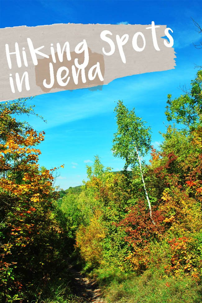 The 3 Top Places for Orchids and Hiking in Jena