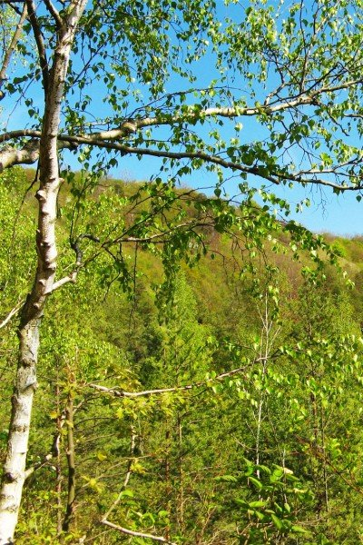 travelonthebrain-hiking-jena-horizontale1