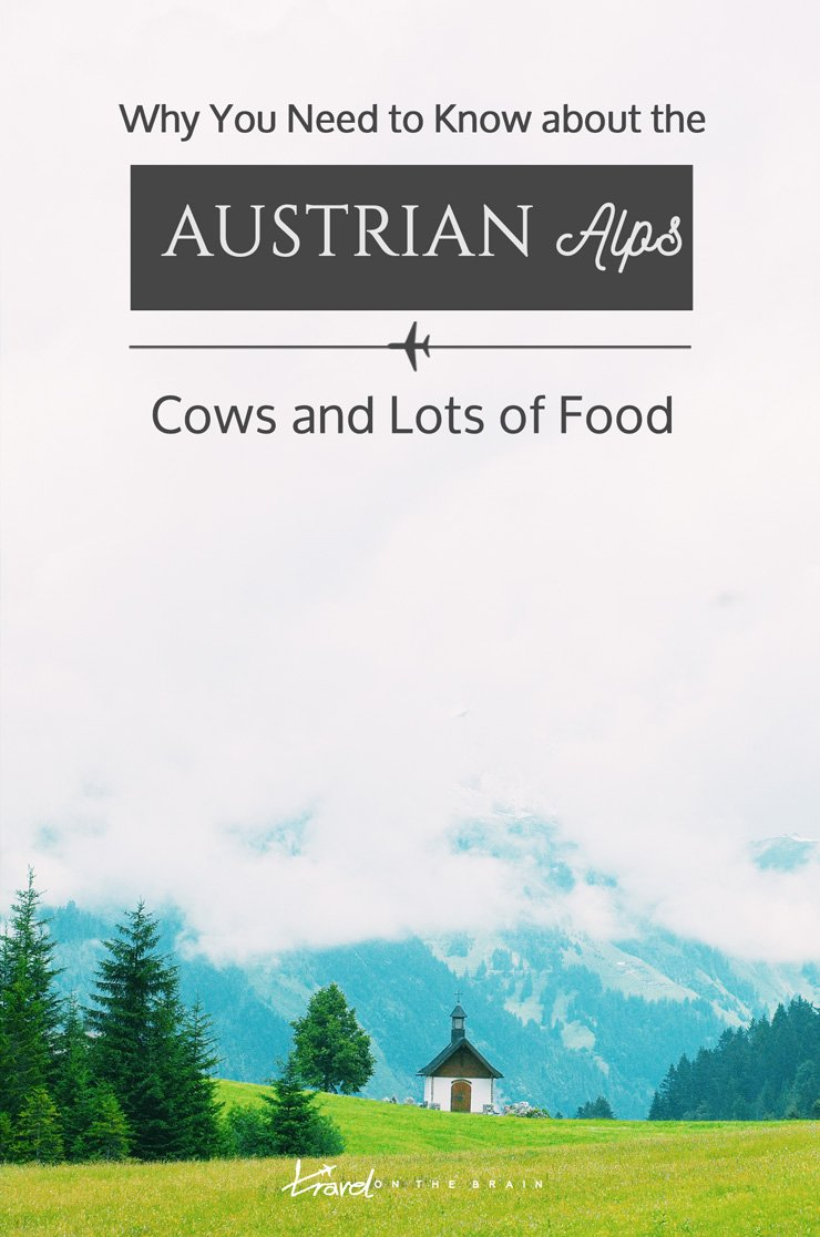 Why You Need to Know about the Austrian Alps, Cows and Lots of Food // Sponsored