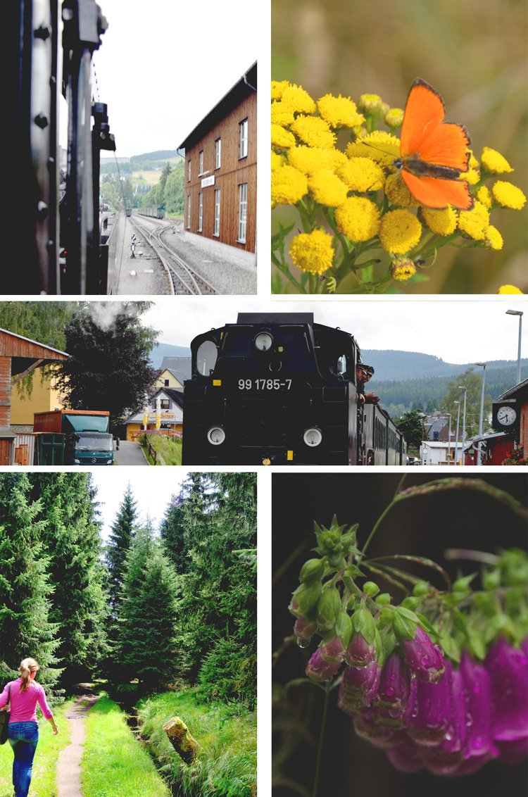 How to Spend a Perfect Summer Day in the Erzgebirge - riding the train
