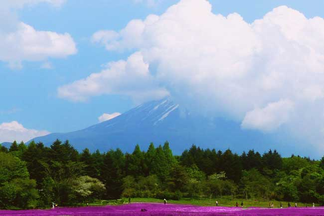 2 Weeks in Japan - Where to Go, What to See - Mt Fuji