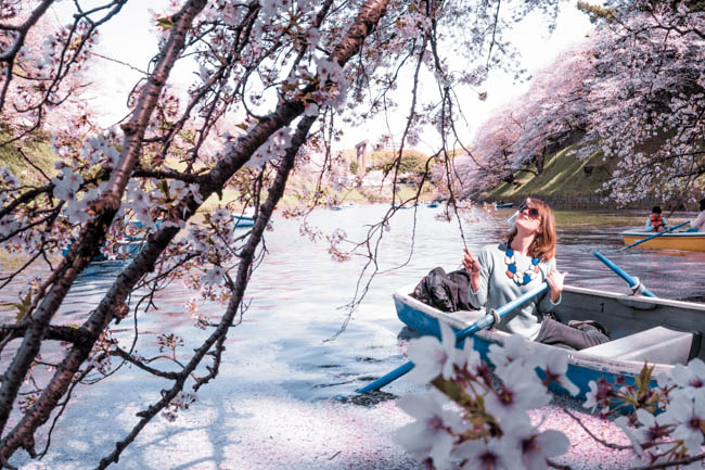 How to Score a Chidorigafuchi Boat Rental in Tokyo in Spring