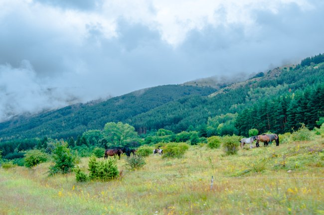 How (Not) to Do a Bulgaria Roadtrip – A Travel Horror Story