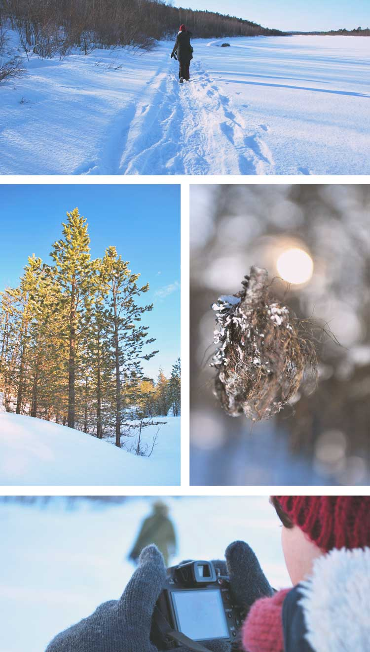 Why You Will Love Lapland At First Glance