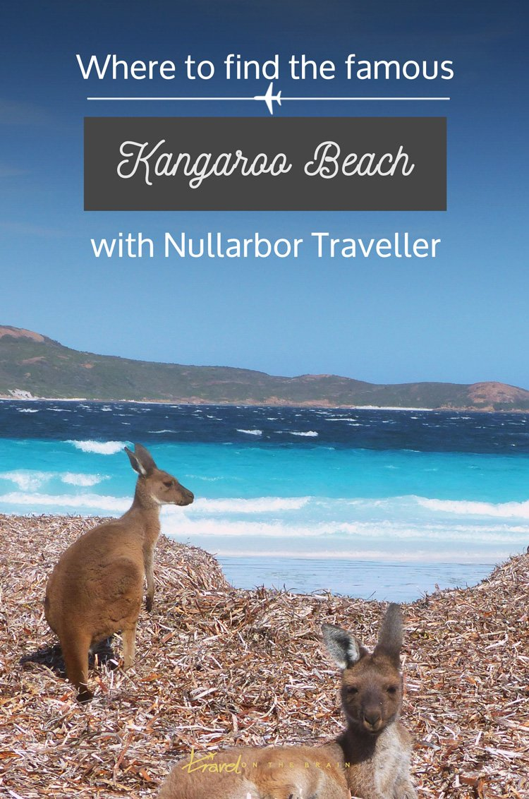 Where to See the Famous Kangaroo Beach + lots of hiking and a VIDEO! // Sponsored