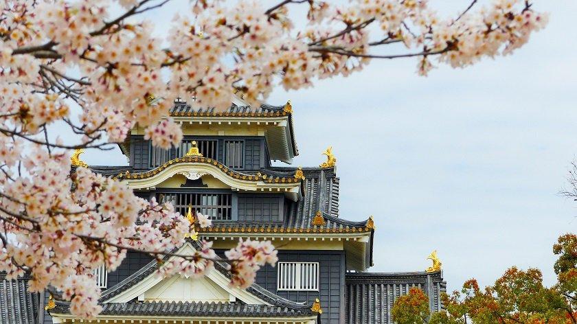 Best Japanese Castles to Visit