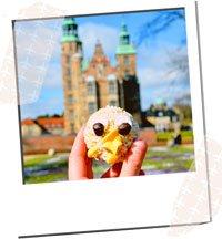 Annemarie Strehl from Travel on the Brain in Denmark