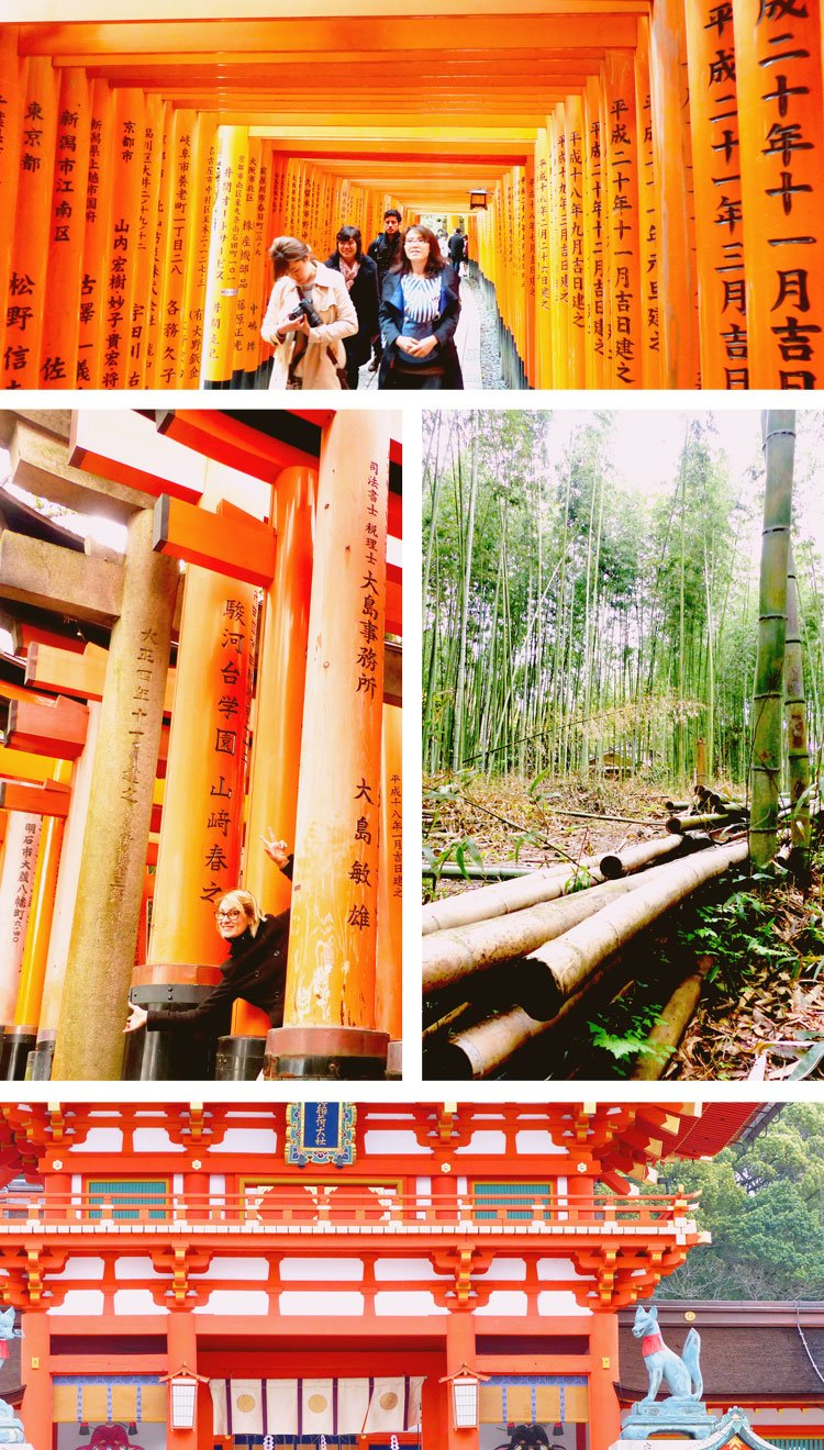 Adventures in Historic Kyoto You Cannot Miss - Bamboo Forest and Torii Gates