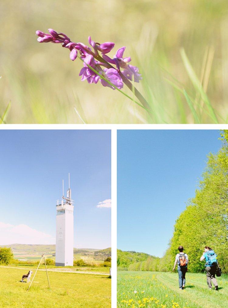 the Natu,dere Reserve Rhoen and its rural sites