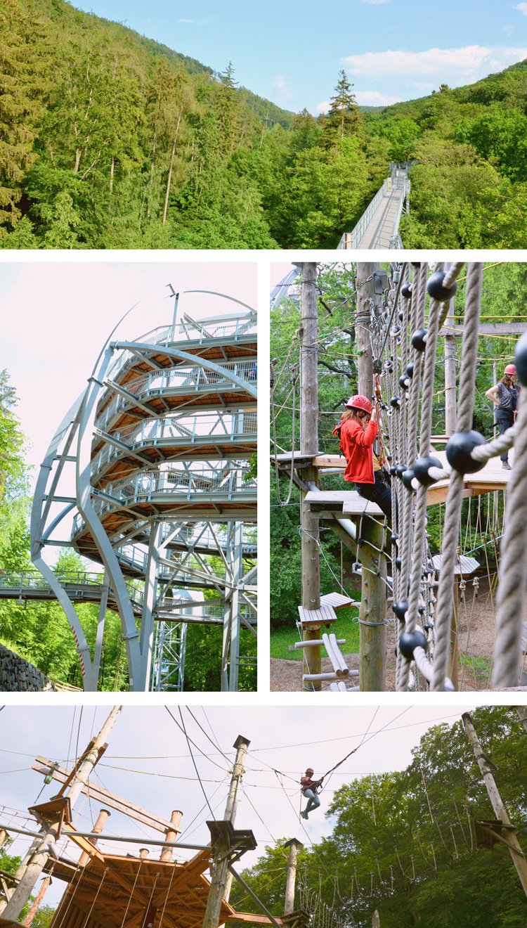 Don't miss these outdoor adventures in the Harz - tree top walking and climbing forest