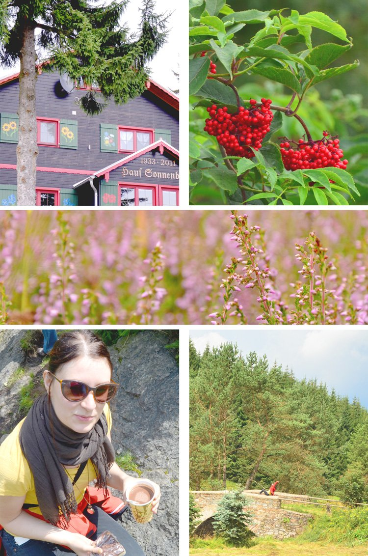 How to Spend a Perfect Summer Day in the Erzgebirge - hiking