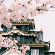 Solo travel around the world ideas - Japan