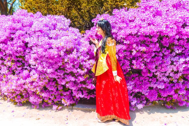 How to Get Your Cheap Hanbok Rental in Seoul
